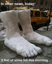 2 feet of snow fell this morning - Unassigned