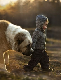 a boy & his dog - Adorable Dog Pics