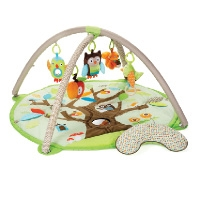Activity Gym - For The Baby