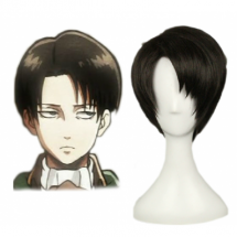 Attack on Titan Levi/Rivaille Cosplay Wig - Attack on Titan Cosplay Wigs