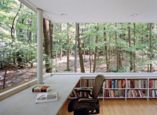 Library in the woods - Unique Building Ideas