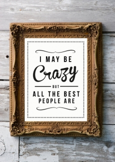 I may be crazy but all the best people are - Sayings that keep me sane