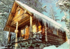 Small Log Cabin in the Woods - Small Cabins