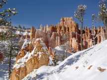 Bryce Canyon  - Natural Treasures