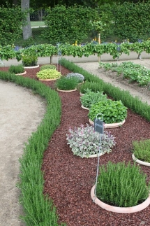 Buried pot garden - Gardens