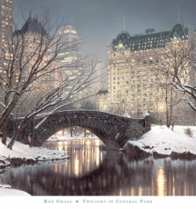 Central Park - New York City - Dream destinations