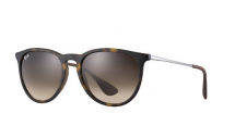Erika Classic Ray-Ban Women's Sunglasses - Accessories