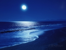 Full Moon Over the Sea - Art for home and cottage