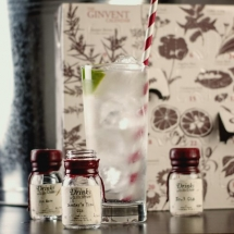 Gin Advent Calendar - Christmas Gift Ideas