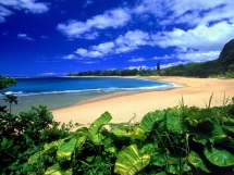 Hawaii - I will travel there