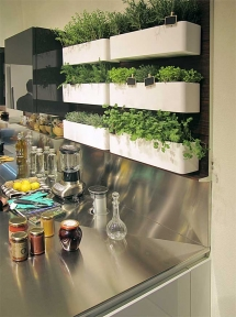 Herb garden in kitchen - Ideas for the home