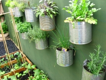 Herb Gardens - Great Gardening Ideas
