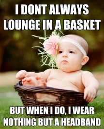 I don't always lounge in a basket - Now that is funny