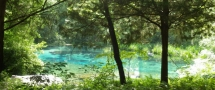 Ichetucknee Springs State Park - Fort White Florida - I will travel there