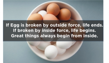 """If egg is broken by outside force, life ends. If broken by inside force, life begins. Great things always begin from inside"" - Inspiring & motivating quotes"