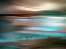 Migrations by Ursula Abresch - Art for home and cottage