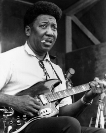 Muddy Waters - Favorite Musicians