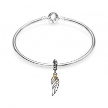 Pandora Love & Guidance Complete Bangle  - Jewelry