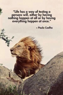 Paulo Coelho quote - Quotes & other things