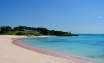 Pink Sand Beach - Harbour Island, The Bahamas - Vacation Spots