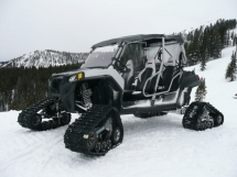 Polaris RZR XP 4 with Camoplast Tatou 4s tracks - Side by Sides