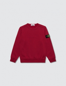 Stone Island Sweatshirt - For the kids