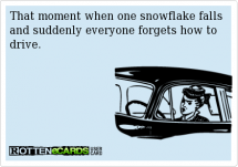 That moment when one snowflake falls & suddenly everyone forgets how to drive. - Funny Stuff