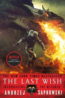 The Last Wish: Introducing the Witcher by Andrzej Sapkowski - Novels to Read