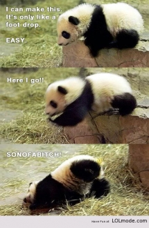 Too Cute - I busted my gut laughing