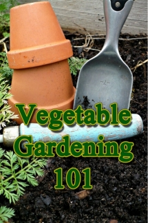 Vegetable Gardening 101 - Home decoration