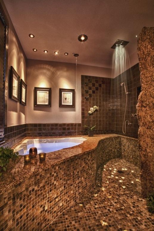 Amazing Bathroom Alluring With Dream Bathroom Shower Photos