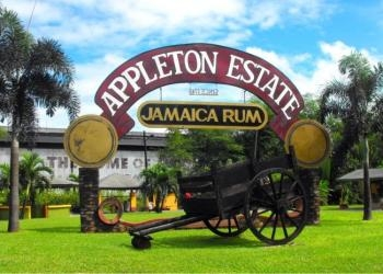 Appleton Estate Rum Factory Tours