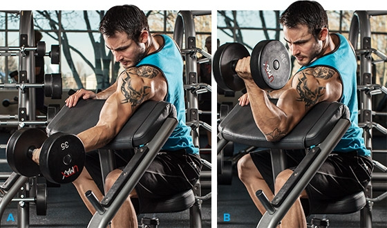 Arm Workouts For Men: 5 Biceps Blasts - Image 2