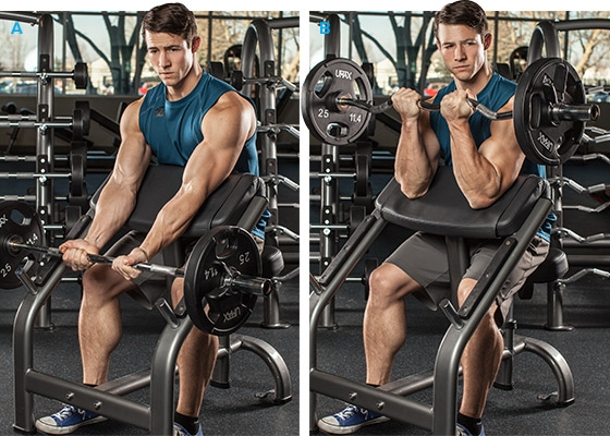 Arm Workouts For Men: 5 Biceps Blasts - Image 3