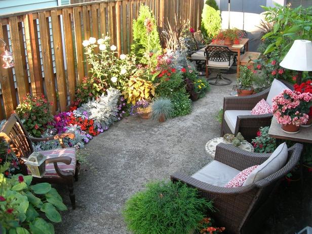 Backyard Garden Idea