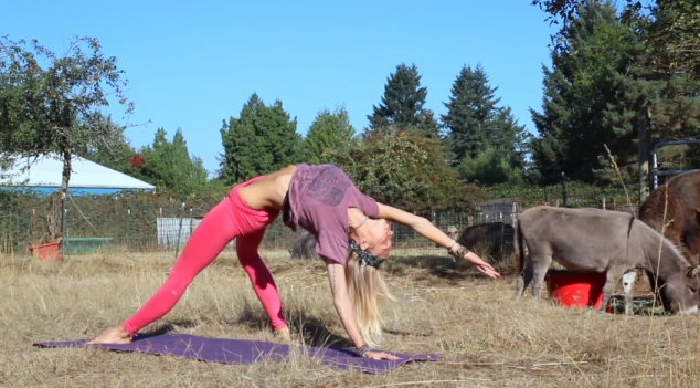 Boho Beautiful - Pilates Hard Core Blast - Image 2