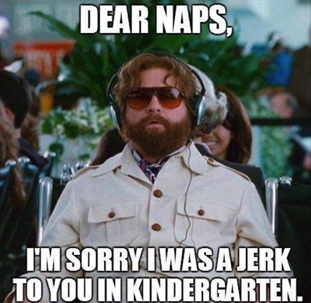 Funny Meme Sorry : Dear naps i m sorry was a jerk to you in kindergarten