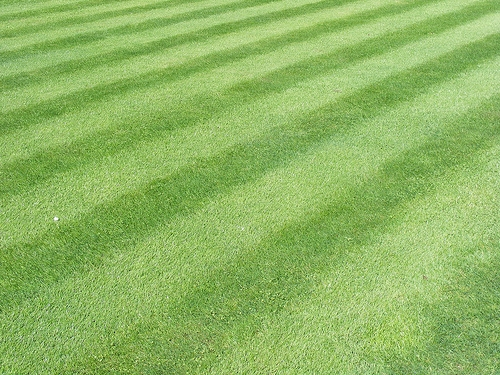 How To Put Stripes In Your Lawn When You Cut The Grass