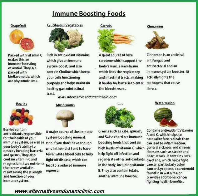 Foods Good For Respiratory System