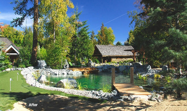 Natural swimming pond with dock summer for Pond swimming pool