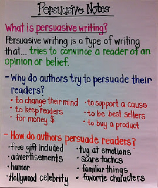What person is a persuasive essay written in