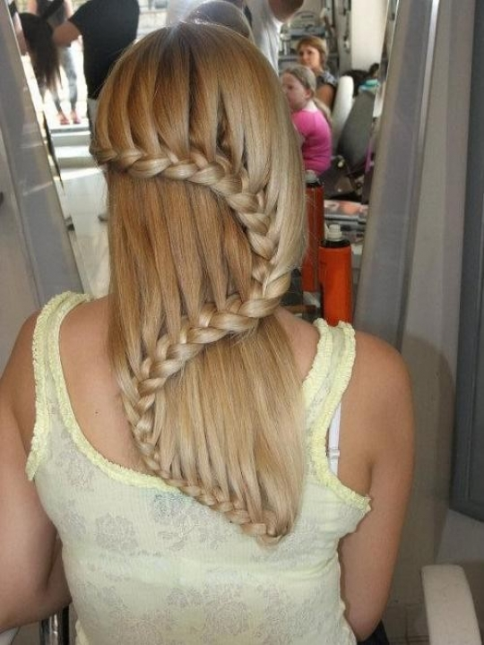 S Shaped Braid For Long Hair