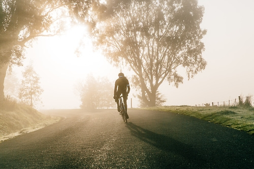 Morning Ride [photo]