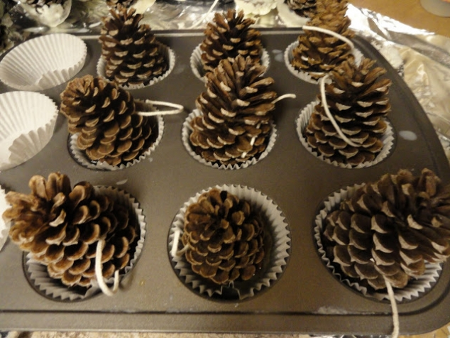 Pine Cone Fire Starters - Image 2
