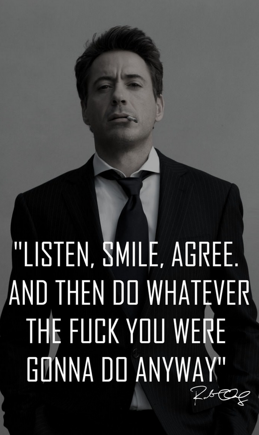 Robert Downey Jr quote