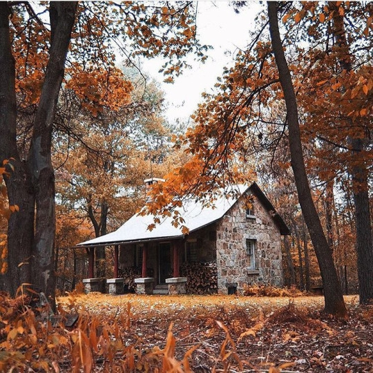 Stone Cabin in the Woods