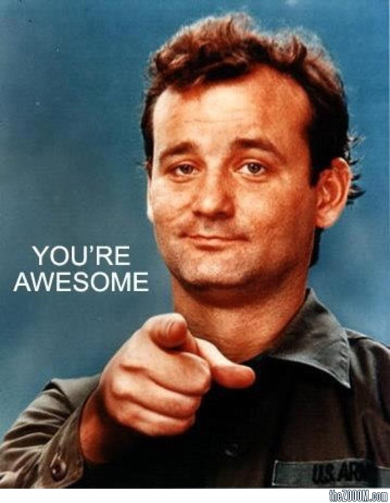 you_re_awesome_bill_murray-1.jpg