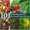 101 Gardening Secrets The Experts Never Tell You - Great designs for the home