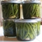 Canning Pickled Green Beans - Canning, Pickling and Preserves