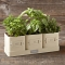 Herb Pot with Tray - Christmas Gift Ideas